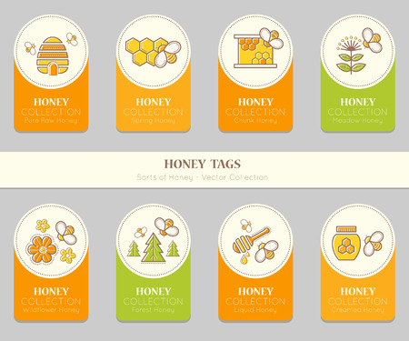 Vector card template with honey emblems. Natural honey tags collection (sorts of honey - pure raw, spring, chunk, meadow, wildflower, forest, liquid, creamed honey). Warm color palette of golden tints Illustration