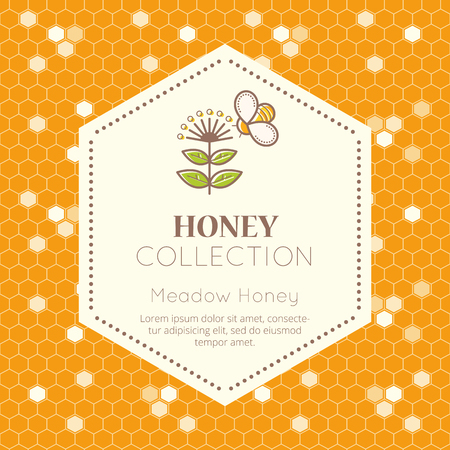 tints: Vector packaging template with seamless patterns. Natural honey collection (meadow honey). Warm color palette of golden tints