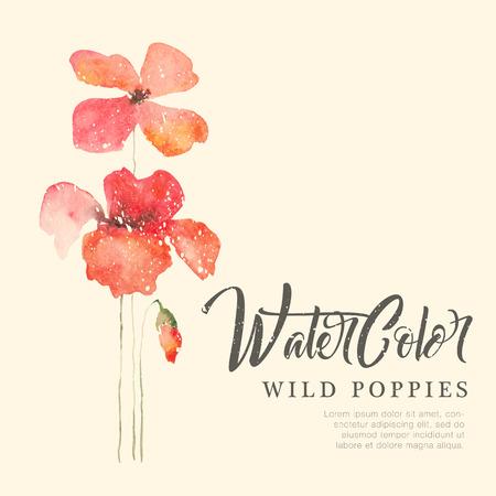 野生の赤いケシの花水彩の背景。サンプル テキスト付き手描き下ろしカード テンプレートです。ロマンチックな壊れやすい花  イラスト・ベクター素材