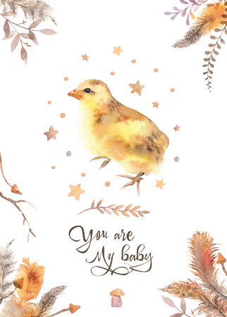 You are my baby - watercolor chicken invitation card decorated with feathers. Baby shower illustration. Baby birthday poster. Trendy loose watercolor image