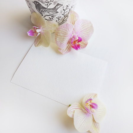Composition with orchid flowers, elegant flower pot and blank paper sheet for text or artwork, white background. Photo for business 写真素材