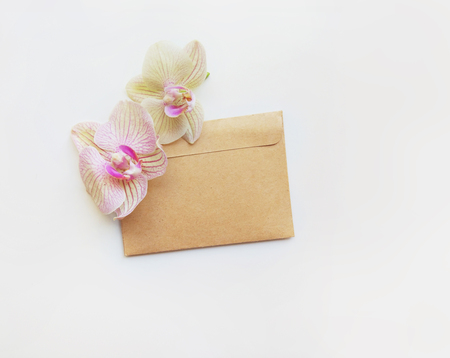 Flat lay composition with orchid flowers, envelope, and space for text or artwork, white background. Light top view photo for business