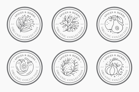 Spice and herb vintage label collection. Black and white round sticker templates for packaging design. Fresh local organic collection Çizim