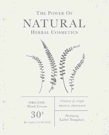 Customizable label of Natural organic herbal products. Fern vintage packaging design templates for Cosmetics, Pharmacy, healthy food. Dried leaves, real herbarium Reklamní fotografie - 127646357
