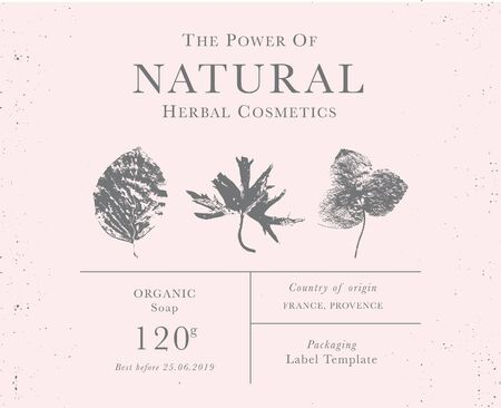 Customizable label of Natural organic herbal products. Vintage packaging design templates for Cosmetics, Pharmacy, healthy food. Dried leaves, real herbarium 矢量图像