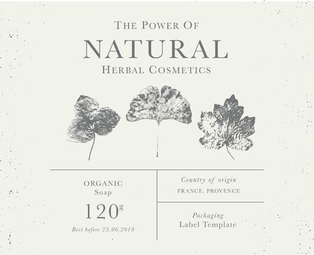 Customizable label of Natural organic herbal products. Vintage packaging design templates for Cosmetics, Pharmacy, healthy food. Dried leaves, real herbarium Illustration