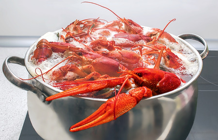 red cooked: large red crabs cooked in a pot on the stove