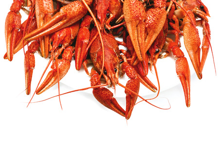 deepening: appetizing red boiled crawfish on a white background Stock Photo