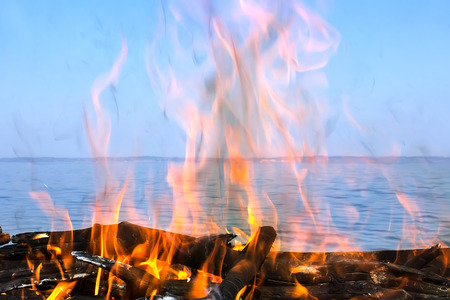 fire of wood on the coast of the sea