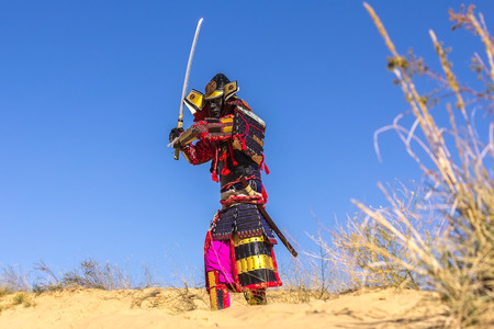 Samurai in ancient armor, with a sword in a field. warrior