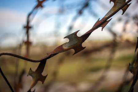 stabbing sharp fence on blurred sky background