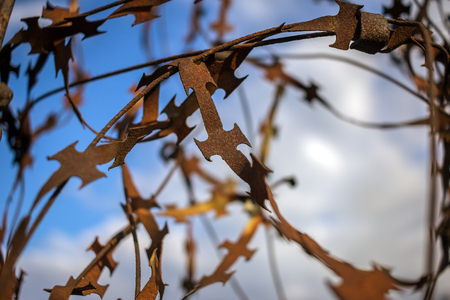 stabbing: stabbing sharp fence on blurred sky background