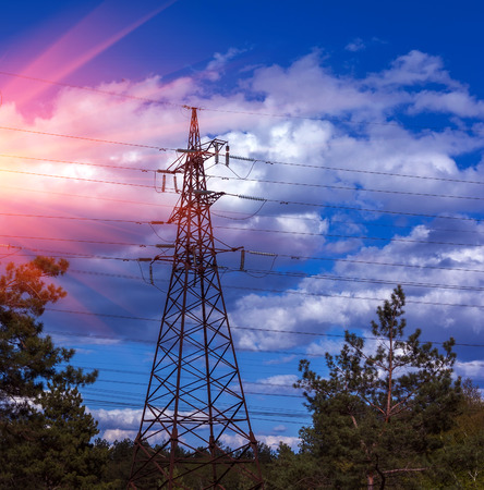 power cables: High-voltage lines against the blue sky and green pine forest.  Stock Photo