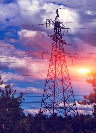 Hogespanningslijnen tegen de blauwe hemel, groene dennenbos bij zonsondergang. Stockfoto