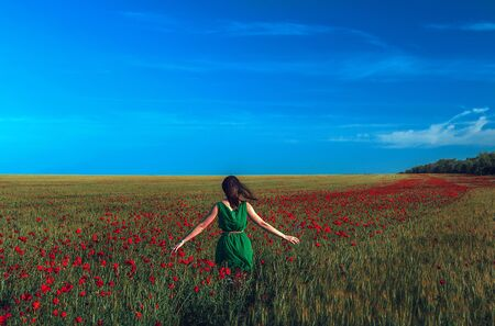 girl in the field with red flowers poppies  at sunset