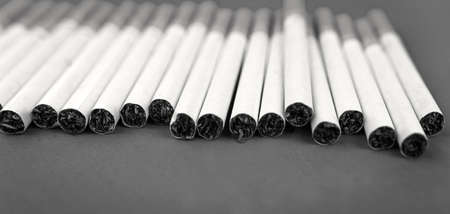 cigarettes with tobacco close-up. nicotine addiction and harm to health.