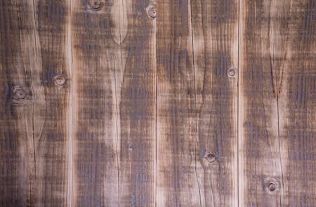wood texture with knots and cracks for background
