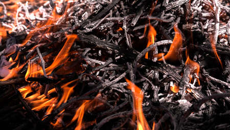 fire texture, close-up for background flame.