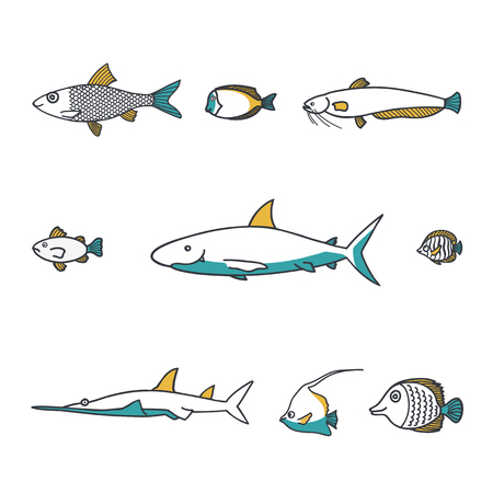 Line design vector fish icon set. Grouper, pike, shark, swordfish. Line zoo children cartoon collection. Banque d'images - 111690385
