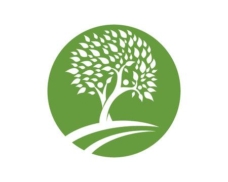 Logo Family Tree Foto de archivo - 48744958