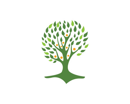 spring water: Eco Tree Logo Template