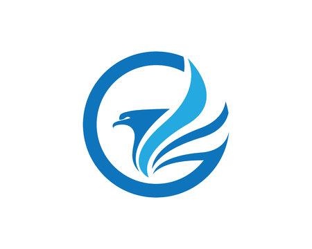 Falcon Template Illustration