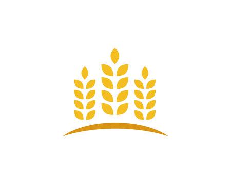 wheat Logo Template Illustration