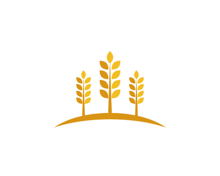 wheat Logo Template Illustration