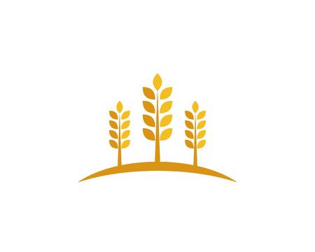 wheat Logo Template 向量圖像