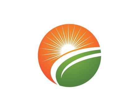 Artistic Vector Icon Logo Template Sun over horizon