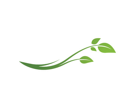 Eco Tree Leaf Logo Template Vettoriali