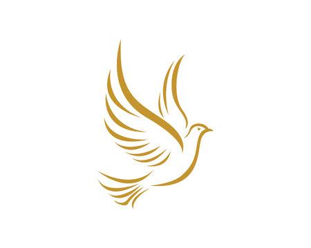 Bird Dove Logo Template in gold Vettoriali
