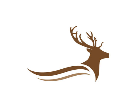 Deer Logo Template Illustration