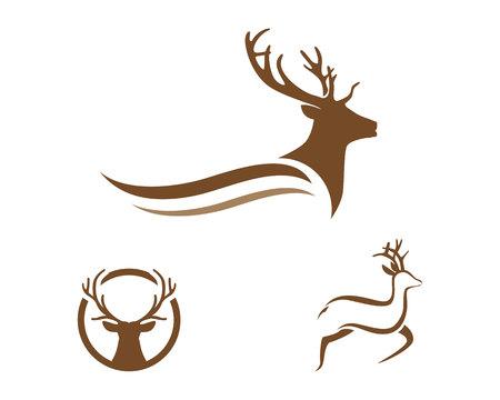 Deer Logo Template Çizim