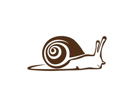 Modèle de logo d'escargot Banque d'images - 77896021