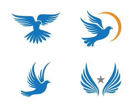 Bird Dove Logo Template Illustration
