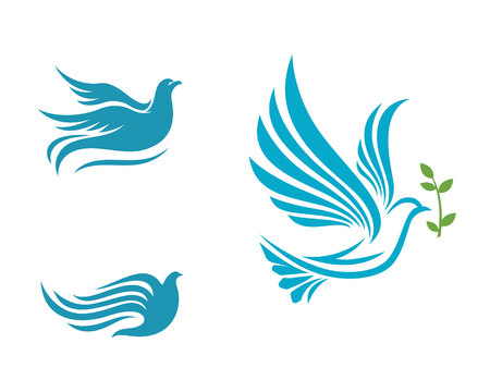 Bird Dove Logo Template Illustration