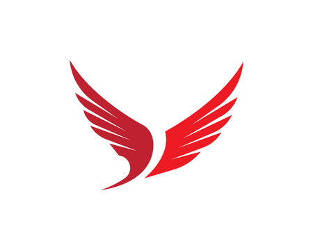 soar: Wing Logo Template vector icon design