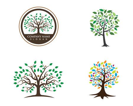 humanity: family tree symbol icon logo design template