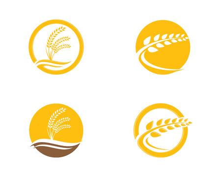 農業小麦デザイン テンプレート ベクトル アイコン デザイン