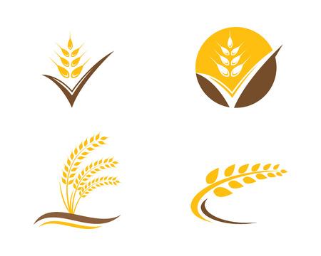 농업 밀 로고 템플릿 벡터 아이콘 디자인 일러스트
