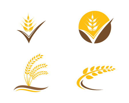 Agriculture wheat Logo Template vector icon design Reklamní fotografie - 83391990