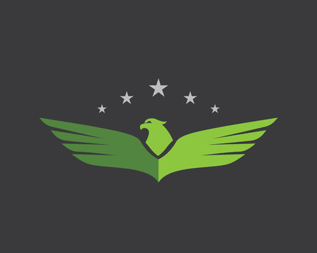 soar: Falcon Wing Logo Template vector icon design