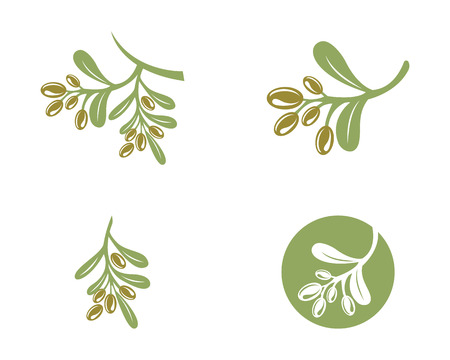 Olijf logo sjabloon