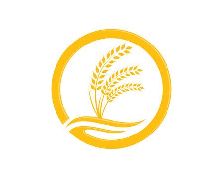 Agricoltura grano Logo Template design vettoriale icona