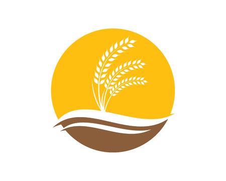 小麦農業のロゴのテンプレート ベクトル アイコン デザイン