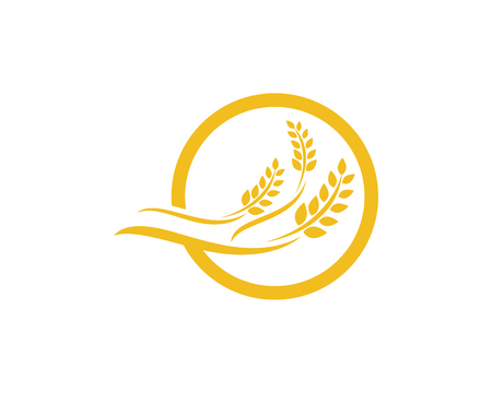 Agriculture wheat Logo Template, vector icon design.