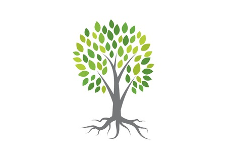 Tree logo vector icon template Vettoriali