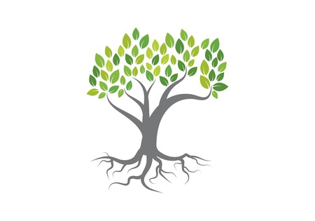 Tree logo vector icon template Illustration