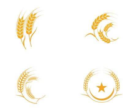 Rolnictwo pszenicy szablon wektor ikona ilustracja projekt